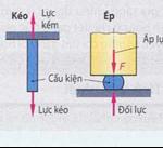 Các loại ứng lực vật liệu