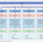 Sự bảo trì Phạm vi hoạt động và định nghĩa