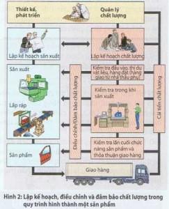 Phạm vi hoạt động của quản lý chất lượng