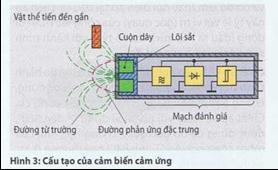 ctac13