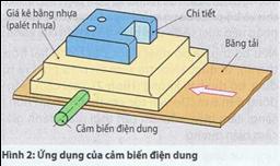 ctac16