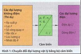 ctac3