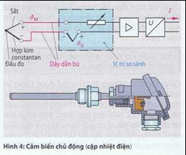 ctac6