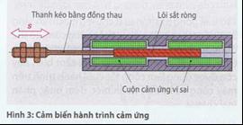 ctac8