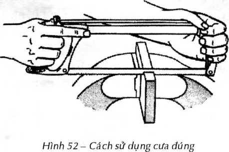 hinh52