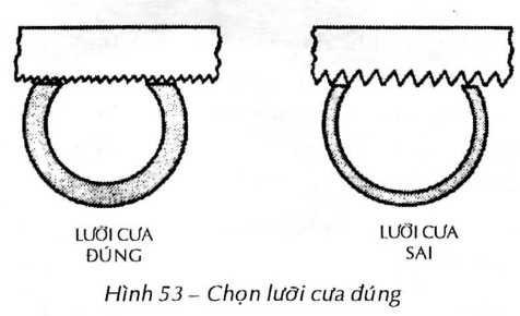 hinh53