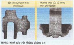 Xét nghiệm cấu trúc kim loại bằng kính hiển vi