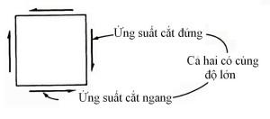 quangquang3