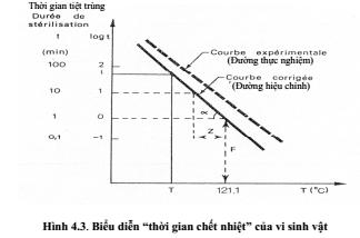 qthanh-trung-5