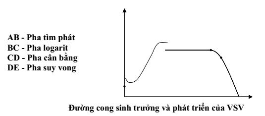 qbao-quan-thuc-pham-1