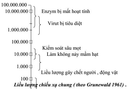 qbao-quan-thuc-pham-bang-phong-xa-6