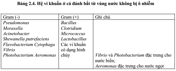 qbiendoicamquan-3