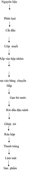 qca-muoi-9