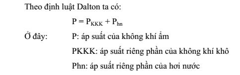 qsay-thuc-pham-5